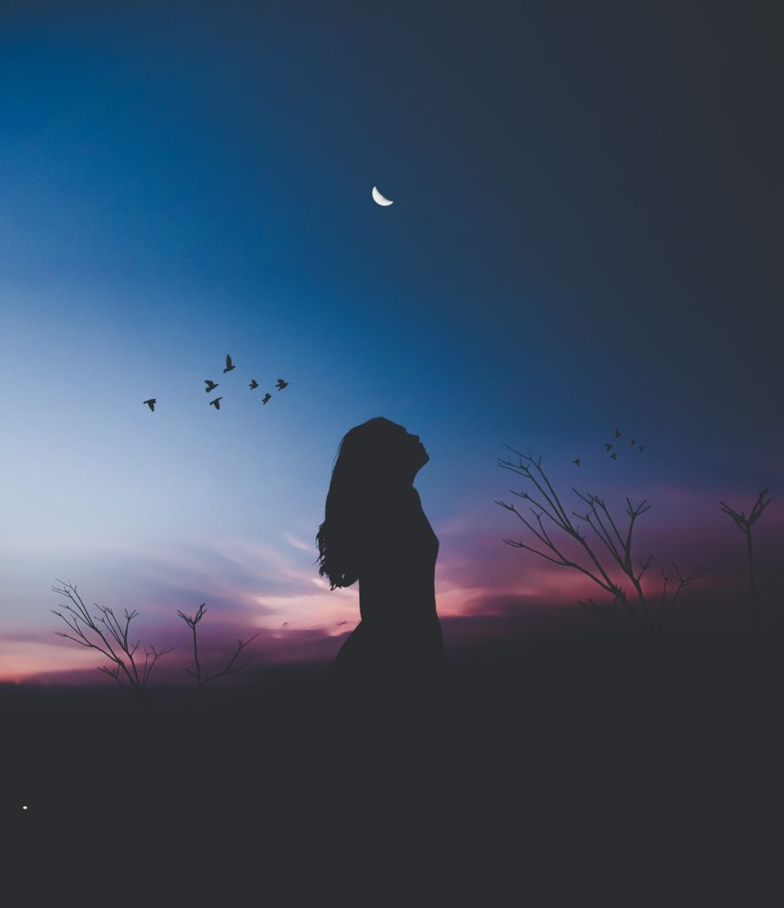 Silhouette of woman looking at night sky with grace birds moon
